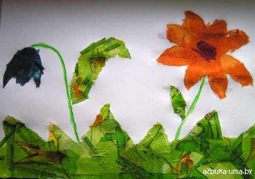 Цветов цветы полей и цветок украшение